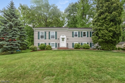 Berkeley Heights Twp. Single Family Home For Sale: 81 Tudor Ln
