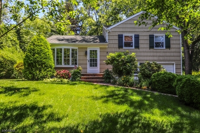 Hunterdon County Single Family Home For Sale: 53 Lakeview Ave
