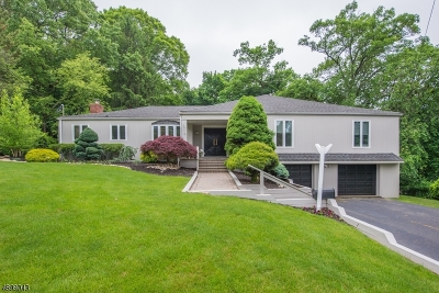 Livingston Single Family Home For Sale: 16 Mt Vernon Ct