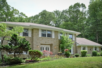 Parsippany-Troy Hills Twp. Single Family Home For Sale: 3 Granada Dr