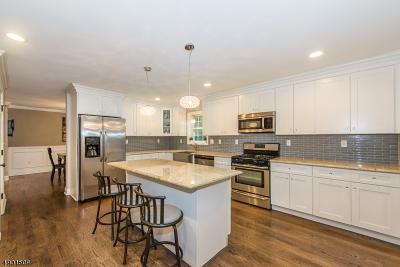 Randolph Twp. Single Family Home For Sale: 58 Morris Tpke
