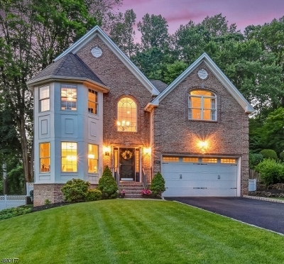Berkeley Heights Twp. Single Family Home For Sale: 293 Mc Mane Ave