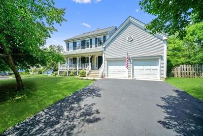 Branchburg Twp. Single Family Home For Sale: 24 Macintosh Rd