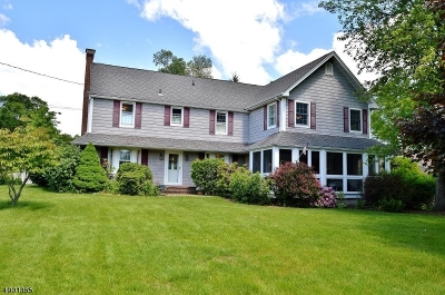 East Hanover Twp. Single Family Home For Sale: 360 River Rd