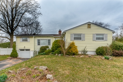 Westfield Town NJ Single Family Home For Sale: $479,000