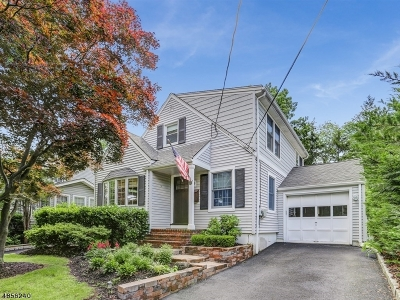 Madison Boro Single Family Home For Sale: 3 Niles Ave