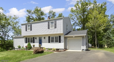 Bridgewater Twp. Single Family Home For Sale: 461 Somerville Rd