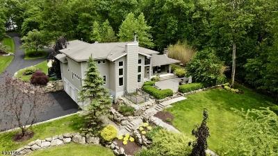 Byram Twp. Single Family Home For Sale: 102 Stonehedge Ln
