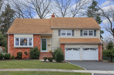 Westfield Town Single Family Home For Sale: 47 Unami Ter