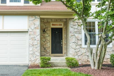 Montgomery Twp. Single Family Home For Sale: 4 Stanford Pl