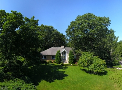 Franklin Lakes Boro Single Family Home For Sale: 700 Jane Dr