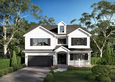 Springfield Twp. Single Family Home For Sale: 534 Ashwood Rd