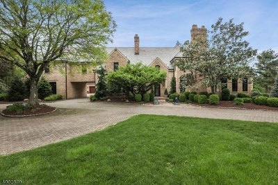 Harding Twp. NJ Single Family Home For Sale: $3,200,000
