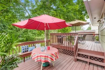 Springfield Twp. Single Family Home For Sale: 41 Hemlock Ter