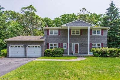 Parsippany-Troy Hills Twp. Single Family Home For Sale: 6 Crawford Road