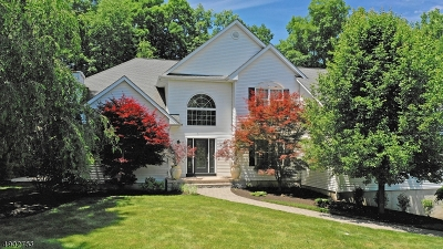 Fredon Twp. Single Family Home For Sale: 6 Schindler Ct