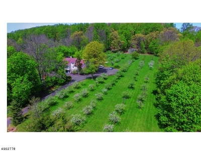 Bridgewater Twp. Single Family Home For Sale: 2229 Washington Valley Rd