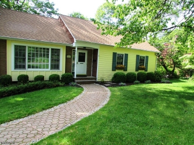 Sparta Twp. Single Family Home For Sale: 48 Springbrook Trl