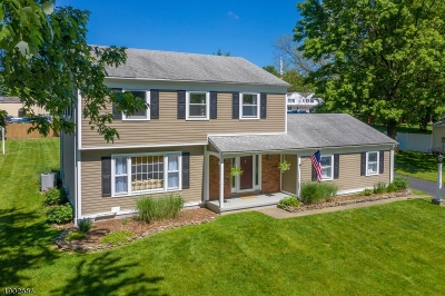 Califon Boro, Tewksbury Twp. Single Family Home For Sale: 44 Cloverhill Dr