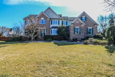 Hillsborough Twp. Single Family Home For Sale: 12 Holecomb Dr