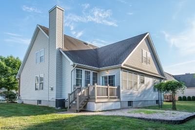 Flemington Boro, Raritan Twp. Single Family Home For Sale: 19 Shippen Ct