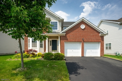 Franklin Twp. Single Family Home For Sale: 21 Schenck Ln