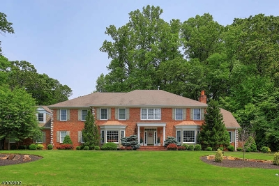 Mendham Boro, Mendham Twp. Single Family Home For Sale: 2 White Oak Ridge Ct