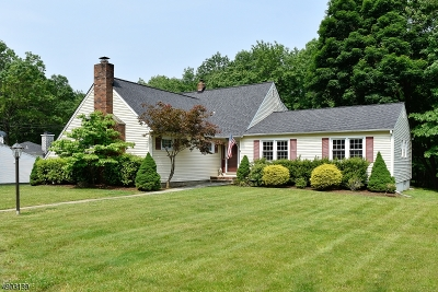 Parsippany-Troy Hills Twp. Single Family Home For Sale: 32 Normandy Dr