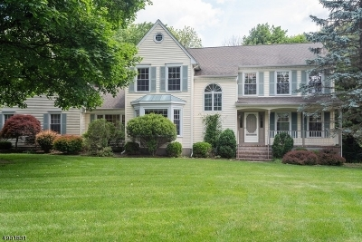 Randolph Twp. Single Family Home For Sale: 4 Winchester Ter