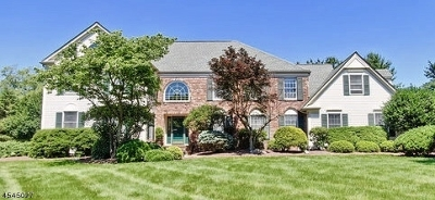 Montgomery Twp. Single Family Home For Sale: 38 Canterbury Ln