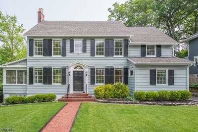 Chatham Boro Single Family Home For Sale: 138 Watchung Ave
