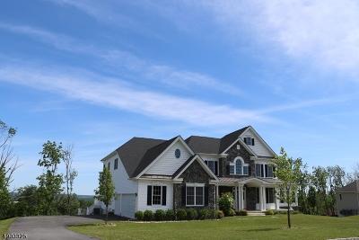 Flemington Boro, Raritan Twp. Single Family Home For Sale: 39 Tiffany Dr