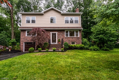 Morris Plains Boro Single Family Home For Sale: 126 Granniss Ave