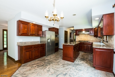 Mendham Boro, Mendham Twp. Single Family Home For Sale: 48 Old Mill Rd