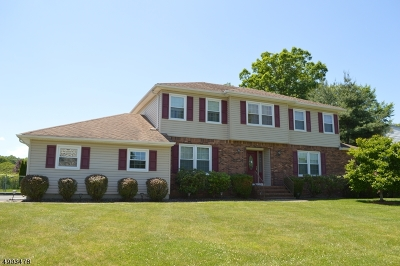 Roxbury Twp. Single Family Home For Sale: 1 Elmwood Dr