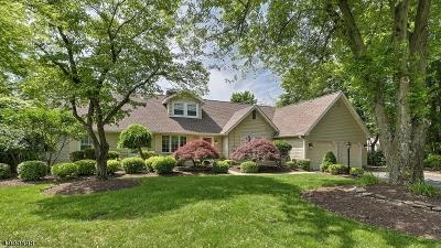 Wayne Twp. Single Family Home For Sale: 310 Alps Rd