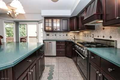 West Orange Twp. Condo/Townhouse For Sale: 49 Clarken Dr