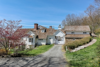 Tewksbury Twp. Single Family Home For Sale: 3 Fieldview Lane