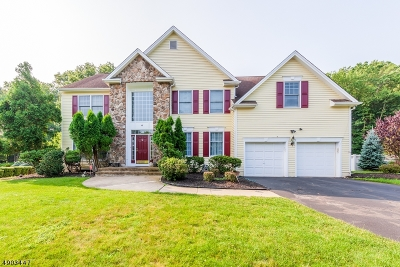 Scotch Plains Twp. Single Family Home For Sale: 6 Swans Mill Ln