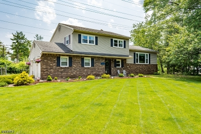 East Hanover Twp. Single Family Home For Sale: 9 Kennedy Ter