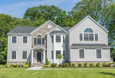 Florham Park Boro Single Family Home For Sale: 16 Lincoln Ave