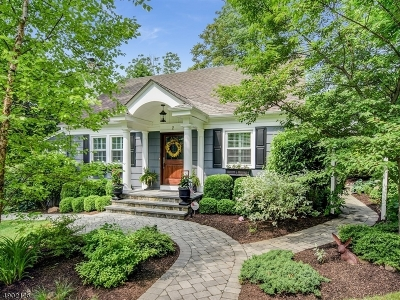 Chatham Twp. Single Family Home For Sale: 2 Long Hill Ln