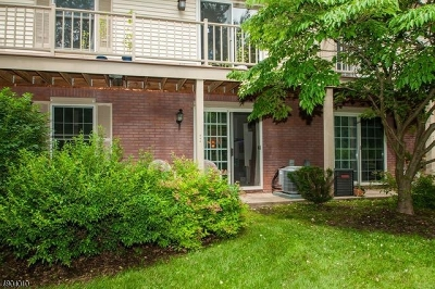 Bernards Twp. Condo/Townhouse For Sale: 93 Jamestown Rd