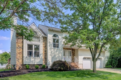 Hillsborough Twp. Single Family Home For Sale: 5 Fisher Dr
