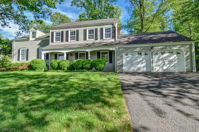 Chatham Twp. Single Family Home For Sale: 15 Lisa Dr