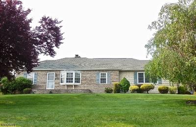 Raritan Boro Single Family Home For Sale: 602 Prospect Place