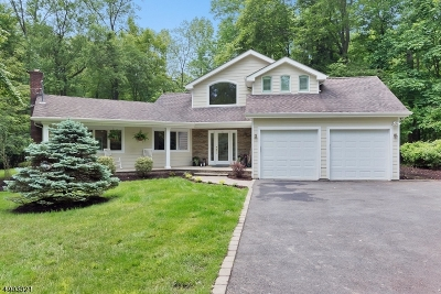 Berkeley Heights Twp. Single Family Home For Sale: 54 Water Ln