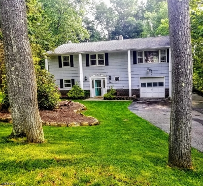 Sparta Twp. Single Family Home For Sale: 1 N White Birch Ter