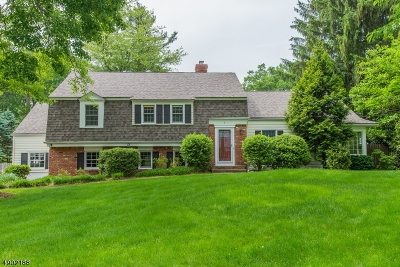 Morris Twp. Single Family Home For Sale: 3 Yorke Rd