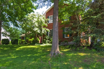 Raritan Twp. Single Family Home For Sale: 9 Reading Rd